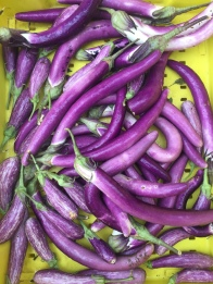 eggplant slim purple